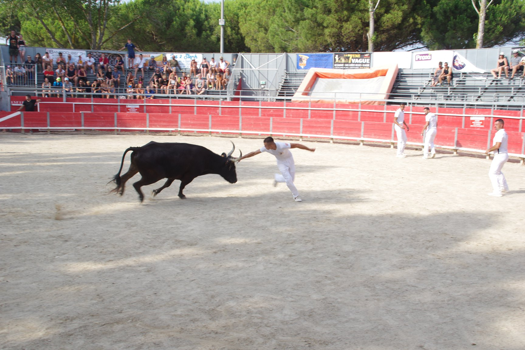 feria19 (1)
