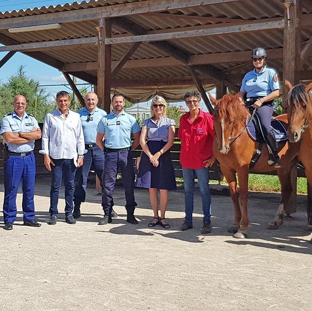 La brigade équestre de la gendarmerie reprend du service pour l'été 2020 !